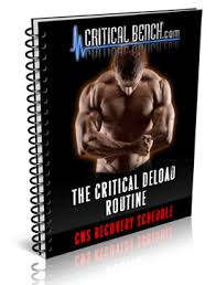 the critical bench program 2 0 pdf mike westerdal review