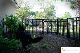dog fence diy pet fencing dog fence diy