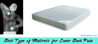 best mattress for bad back. Plain Mattress Best Mattress For Lower Back Pain For Mattress Bad Back E