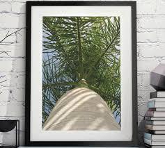 items similar to palm tree print palm tree decor palm wall art plant wall art tree wall art tropical art tropical wall prints palm leave print  on tropical wall art uk with palm tree print palm tree decor palm wall art plant wall art tree