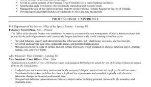 cv means resume curriculum vitae by fbio moderno via behance