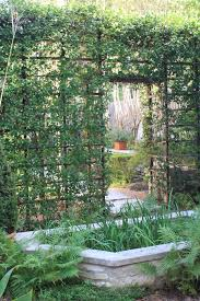 image of creative design metal garden trellis