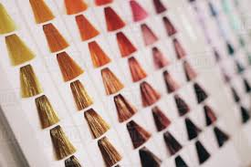 Sample Hair Colors Chart Closeup Of Hair Samples With Different Color Shades On A D2012_157_004