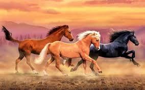 wild horses mustang wallpaper. OriginalWide Mountains Wild Horses Dust Wallpapers In Mustang Wallpaper