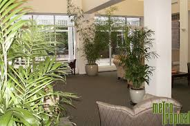 interior landscaping office. Metro Tropical Plant Is Fully Committed To Providing Superior Interior Landscaping \u0026 Services Boston MA Businesses. Office N