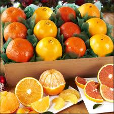 4 orange variety box 30303 1444057563 1280 1280
