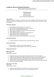 Sample Resum Entry Level Customer Service Resume Nice Best Resume