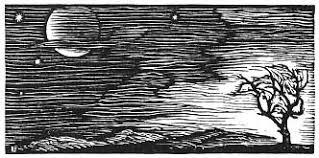"THE WALRUS SAID . . . . . . . . . being a bookish blog: Review: ""A  Dangerous Fiction,"" Barbara Rogan"