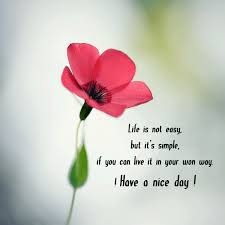 Life Is Not Simple But It's Easy Quote Amo Impressive Nice And Simple Quotes