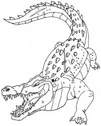 Small Picture Crocodile coloring page Animals Town animals color sheet