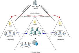 best images of active directory structure diagram   active    active directory forest domain diagrams