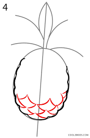 pineapple drawing. how to draw a pineapple step 4 drawing
