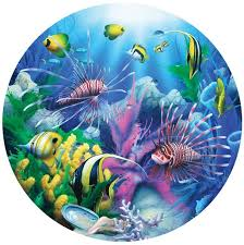 lions of the sea david miller painting art animals fishes tropical sealife life color underwater c reef ocean sea sunlight wallpaper background