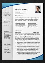 Best Photos Of Professional Resume Format Template Professional Cv