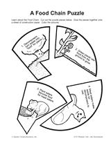 fc6d269e3f2b6e37acb9ba5596cc1277 a food chain puzzle animals in winter the mitten pinterest on food web worksheet pdf