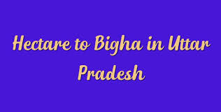 Hectare To Bigha In Uttar Pradesh Simple Converter