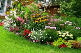 Comfortable Flower Garden Design Ideas With Small Front Yards Colorful Flower  Front Yard Flower Gardens in
