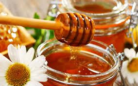 """Résultat de recherche d'images pour """"photo miel"""""""