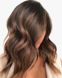 Medium Length Brown Hair With Light Brown Highlights 50 Dark Brown Hair With Highlights Ideas For 2020 Hair Adviser