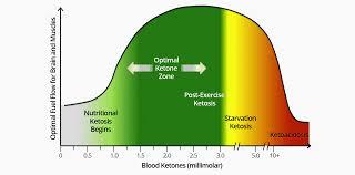 Optimal Ketosis Chart Optimal Ketone And Blood Sugar Levels For Ketosis