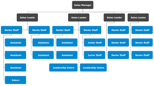 Title Organizational Chart Template Different Sectors For