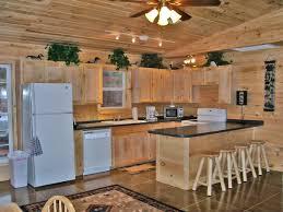 Cabin Kitchen Log Cabin Kitchen Appliances Designing Dazzling Log Cabin
