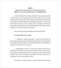 Annual Meeting Minutes Sample Llc Template Opusv Co
