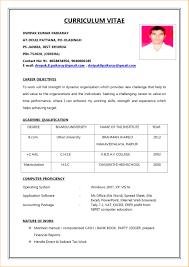 Biodata Sample For Job Doc Format Download Pdf Bio Data
