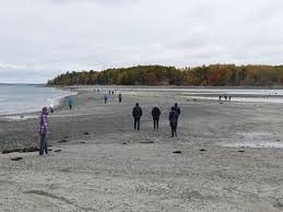 Image result for bar harbor low tide