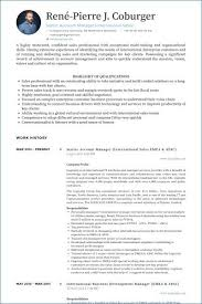 Account Executive Resume Extraordinary Account Executive Resume From Account Manager Resume Free Resume