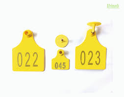 Small 100 Tag Of Afrimash com Ear pack Ruminants Nigeria For -
