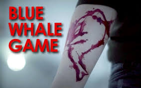 Image result for pics of blue whale game