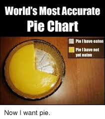 Worlds Most Accurate Pie Chart Piel Have Eaten Pie I Have