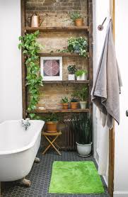 How To Make Bathroom Plants Work With Minimal Space Low Lighting Plants In Bathroom