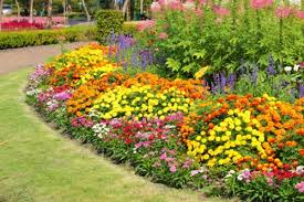 Small Picture Perennial Flower Bed Designs for a Garden That Resembles Paradise