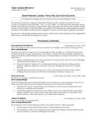 Real Estate Appraiser Resume Real Estate Appraiser Resume Example
