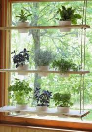 hanging plant holder - perfect for a window and holds lots for plant .