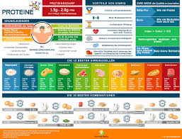 Die 10 besten Lebensmittel zum, abnehmen