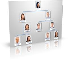 Wordpress Org Chart Clicface Staff Directory Org Chart And Suggestion Box For
