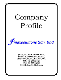 Business Profile Template Free Corporate Profiles Example It Resume