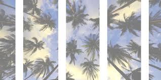 palm trees tumblr header. Perfect Tumblr Image For Palm Trees Tumblr Header H