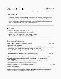 Writing A Resume Summary New Writing A Good Resume Summary Sample Classy Writing A Good Resume