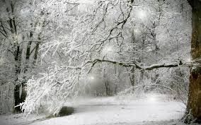 winter background images hd. Wonderful Winter Winter Snow HD Background On Images Hd I