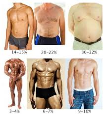 Men S Body Fat Chart Donald Trump Exercise And Mens Body Fat Percentage