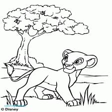 31 Coloriage 17 Le Roi Lion Kazou De Zazou
