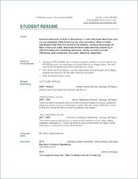 resume college student sample resume profile examples for college students ceciliaekici com
