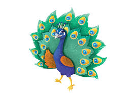 Indian Peacock Design Piku The Indian Peacock On Wacom Gallery