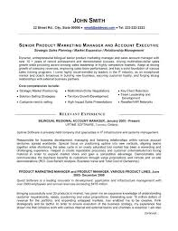 Product Manager Resume Examples A Professional Resume Template For A