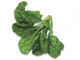 Leaves Vegetables