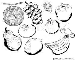 フルーツのセット ベクターイラスト 線画のイラスト素材 39863050 Pixta